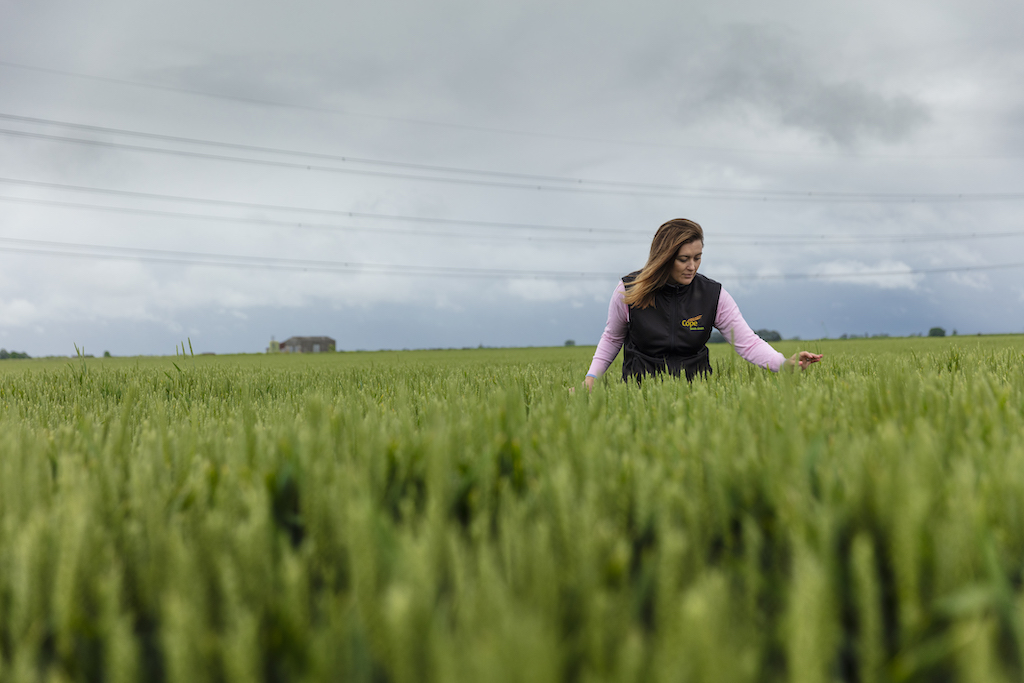 Gemma Clarke, company director, in a field of wheat