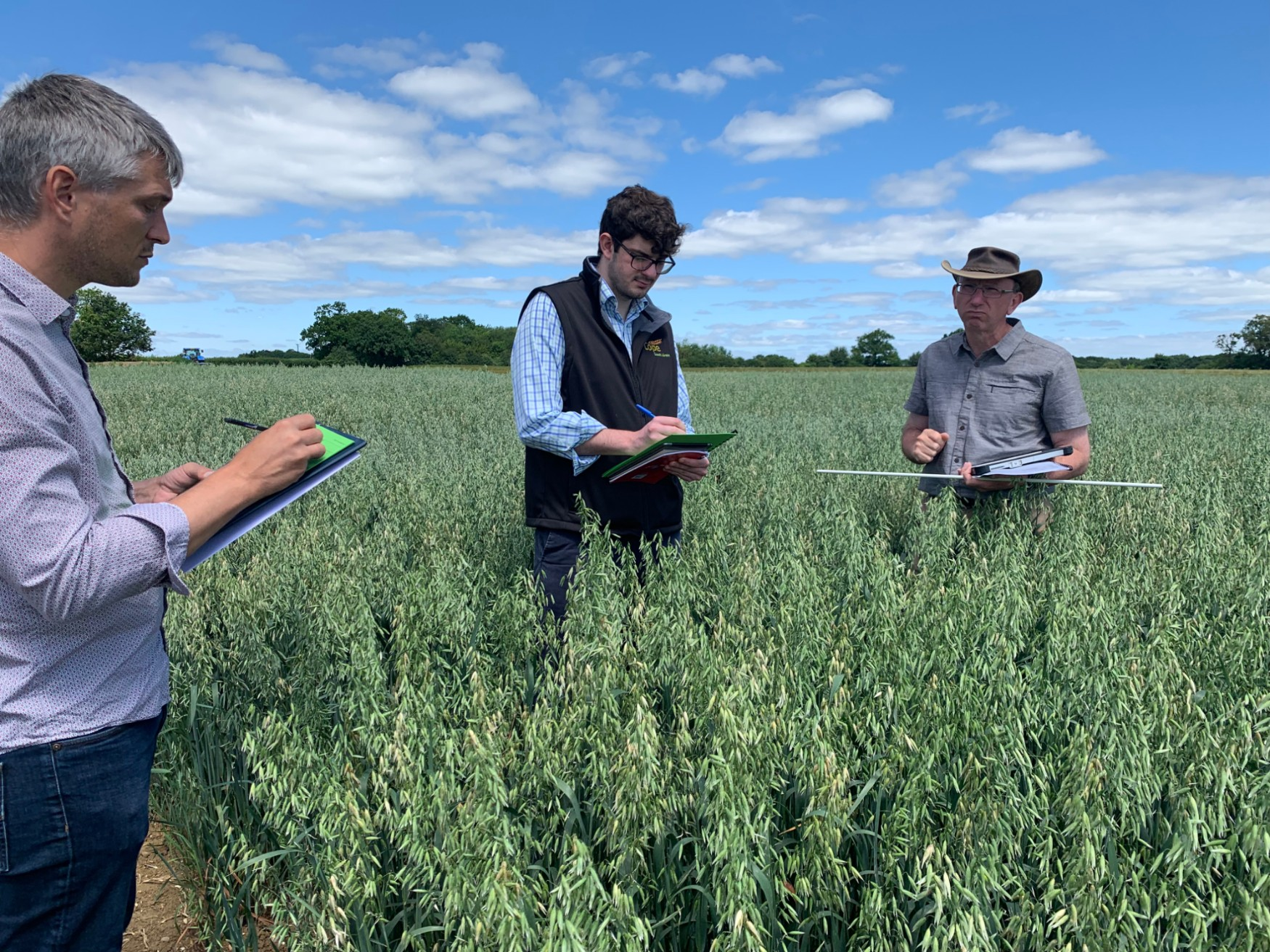 Cope Seeds team recording information in a naked oats field