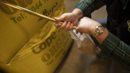 Cope Seeds & Grain cereal being put into bags