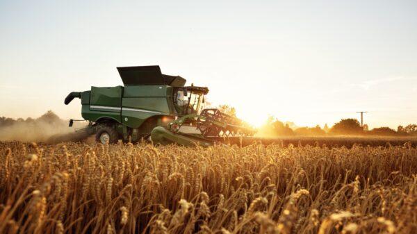 Combine sunrise - Cope Seeds & Grain